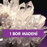 1 Bor Madeni