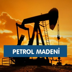 Petrol Madeni